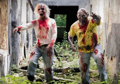 The living Dead Experience 1 - Emmerich Events