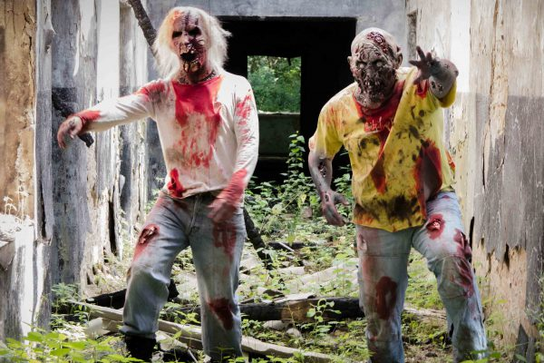 The living Dead Experience - Emmerich Events, Grusel Events, Horror Events, Firmenevents, the Walkind Dead
