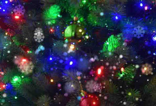 Weihnachtsbaumschlagen in Düsseldorf, die Weihnachtsfeier in Düsseldorf, Weihnachtsfeier Düsseldorf, Weihnachtsevent Düsseldorf, Weihnachtsfeier Düsseldorf, Firmenevent Düsseldorf