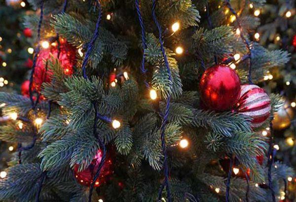 Weihnachtsbaumschlagen in Dortmund, die Weihnachtsfeier in Dortmund, Weihnachtsfeier in Dortmund, Weihnachtsevent in Dortmund, Weihnachtsfeier Dortmund, Firmenevents, Firmenevent in Dortmund