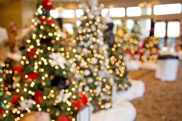 Weihnachtsbaumschlagen in Frankfurt am Main, die Weihnachtsfeier, Weihnachtsfeier, Weihnachtsevent, Firmeneven