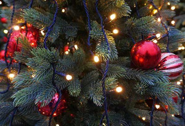 Weihnachtsbaumschlagen in Hamburg, die Weihnachtsfeier in Hamburg, Weihnachtsfeier, Weihnachtsevent in Hamburg, Weihnachtsfeier Hamburg, Weihnachtsfeier Hamburg, Firmenevents, Firmenevent Hamburg