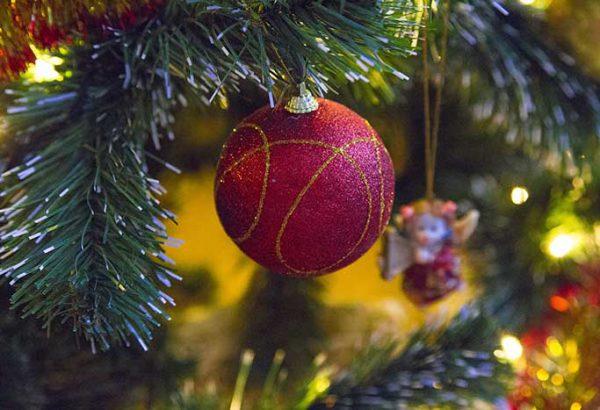 Weihnachtsfeier Leipzig.Weihnachtsbaumschlagen In Leipzig Die Weihnachtsfeier