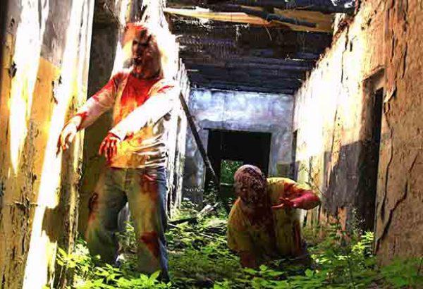 Zombie Virus Düsseldorf, Teambuilding Events in Düsseldorf, Horror Events in Düsseldorf, Events in Düsseldorf, Emmerich Events in Düsseldorf